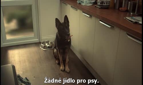 After Life S01E01 CZtit V OBRAZE.avi