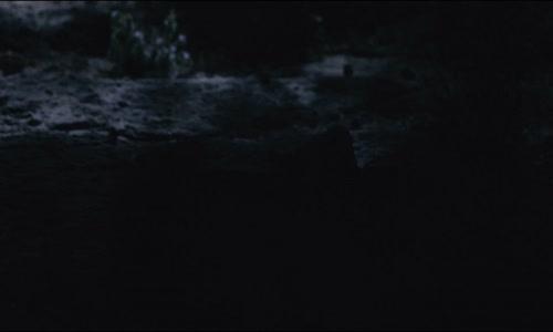 The Tracker 2019 CZ titulky -Super.1080p Thriller-Novinka.mp4