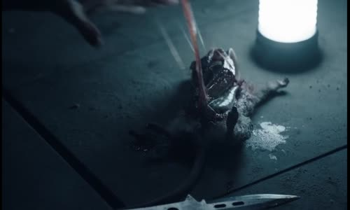 S01E02 Vychováni vlky (2020) CZ titulky.avi